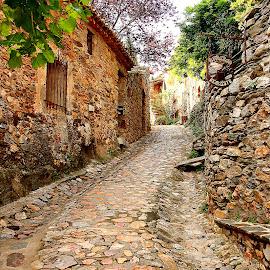 Castelnou - La ruelle by Gérard CHATENET - City,  Street & Park  Street Scenes