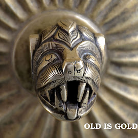 Old is gold by Sanjeev Kumar - Typography Quotes & Sentences (  )