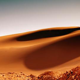 Atacama desert by Stanley P. - Landscapes Deserts ( atacama, desert )