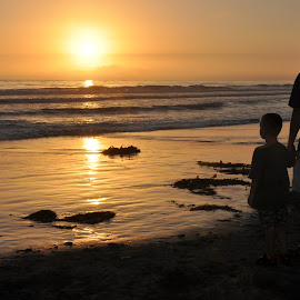 Sunset on the Beach by Dawn Hoehn Hagler - Landscapes Beaches ( water, silhouette, california, sunset, beach, landscape, encinitas,  )