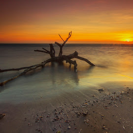 Castle beach sunset  by Ady Roses - Landscapes Sunsets & Sunrises ( indonesia, sunset, long exposure, landscape, photography )