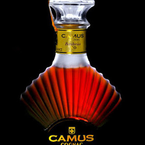 Camus XO by Philip Wibowo - Food & Drink Ingredients