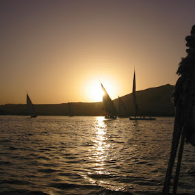 Sailing in Egypt by Morten Gustavsen - Sports & Fitness Watersports ( holiday, sailing, sunset, egypt )