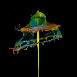 Torn Rainbow Umbrella by Ganjar Rahayu - Abstract Water Drops & Splashes ( abstract, liquid sculpture, highspeed, macro, liquid, waterdrop, color, liquid art, rainbow, black )