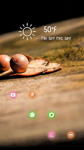 Fruit and leaves theme - screenshot