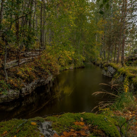 by Bojan Bilas - Landscapes Forests ( stream, nature, autumn, waterscape, fall, creek, suomi, finland, long exposure, forest, landscape, rauma )