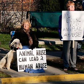 Demanding Tougher Animal Cruelty Laws by Lacy Gillott - News & Events Politics