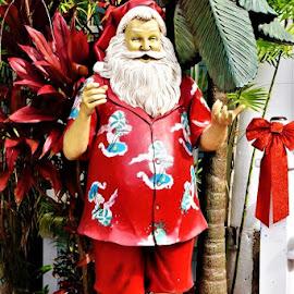by Donna Van Horn - Public Holidays Christmas (  )