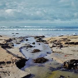 by Daniel Peet - Landscapes Beaches