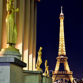 by Herry Wibisono - Buildings & Architecture Statues & Monuments ( paris, paleis de chaillot, trocadero, eiffel, night shot )