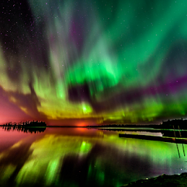 Aurora Borealis by Joseph Law - Landscapes Starscapes