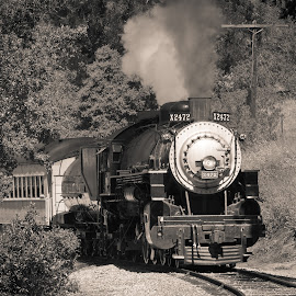 Southern Pacific 2472 by Joseph Gonzales - Transportation Trains ( steam locomotive, engine, railroad, locomotive, rail, niles canyon, train, southern pacific, niles, steam )