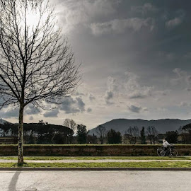 Lucca's wall by Andrea Pillonca - City,  Street & Park  Historic Districts