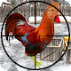 Chicken Shooter game of Chicken Shoot and Kill