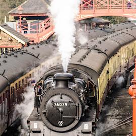 by Sue Lascelles - Transportation Trains