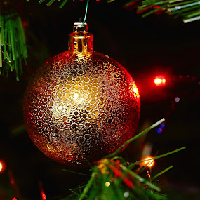 A ball in the night by Gérard CHATENET - Public Holidays Christmas (  )