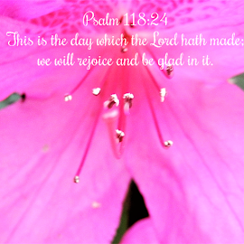 Psalm 118:24 by Cheryl Beaudoin - Typography Quotes & Sentences ( rejoice, scripture, bible, lord, psalm 118:24 )