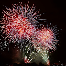 Fireworks festival in Zagreb by Petar Zg - Abstract Fire & Fireworks ( fireworks, night, festival, light, fire )