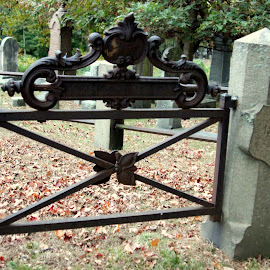 Gated community by Janet Smothers - City,  Street & Park  Cemeteries