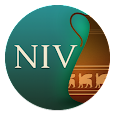 NIV Cultural Backgrounds SB