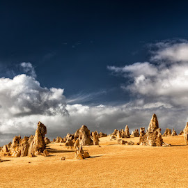 The pinnacles by Timo Bierbaum - Landscapes Travel ( perth, nature, stone, yellow, pinnacles, formation, western australia )