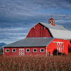 Big red  by Todd Reynolds - Buildings & Architecture Other Exteriors ( farm, red, barn, country )
