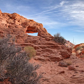 by Jen Cornell - Landscapes Deserts