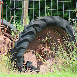 Miles  left on the tire by Kathy Psencik - Novices Only Street & Candid ( old tire, left for dead, flat tire, rusty tractor, rotten tire, tractor )