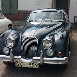 JAGUAR by Zoritza Zozo Wejnfalk - Transportation Automobiles ( car, jaguar, zoritza, zozo, wejnfalk )