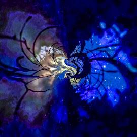 Night Sky Ascending by Gia Gee - Digital Art Things ( night sky, night scape, night, celestial night, star gaze )
