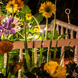 Life & Death by Jonathon Ahhee - Artistic Objects Still Life ( lights, bassinnett, crib, nighttime, flowers )