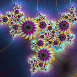 Flowers 5 by Cassy 67 - Illustration Abstract & Patterns ( wallpaper, digital art, bloom, harmony, fractalart, flowers, fractal, digital, fractals, floral, blossom, flower )