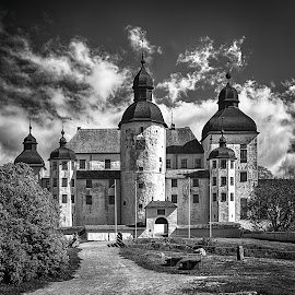 Castle in Sweden by Tony Mortyr - Black & White Buildings & Architecture ( castle )