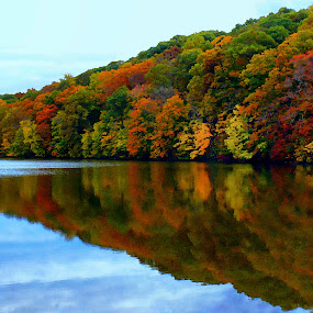 Colored Trees on Lake by Jeff Dalton - Landscapes Forests ( water, reflection, lakes, pictures, lake, photography, multicolored, picture, tree, season, nature, seasons, fall, trees, landscape photography, landscapes )