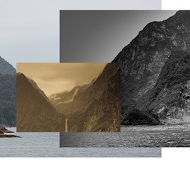 Milford Sounds by Benjamin Dobbs - Illustration Flowers & Nature ( sepia, nature, black and white, illustration, milford sounds )
