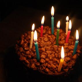 by Maya Farebrother - Public Holidays Birthdays