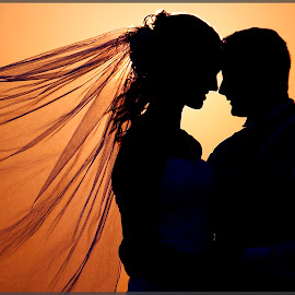 Lovers Sunset by Arista Daley - Wedding Reception