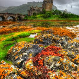 Eilean Donan by Carlo Gulin - Landscapes Travel ( scotland, hdr, eilean donan, castle )