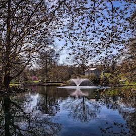 Civil War Fountain in the Spring by Pat Lasley - City,  Street & Park  Cemeteries ( water, graves, fountain, cemetery, trees, pond )