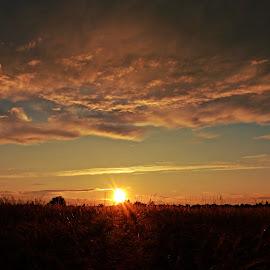 by Zdenka Mihinjač - Landscapes Sunsets & Sunrises (  )