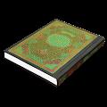 Holy Quran (القرآن الكريم)