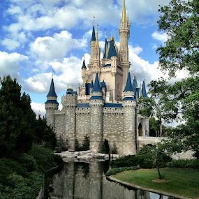 Disneyland Orlando by Ludwig Wagner - Instagram & Mobile iPhone