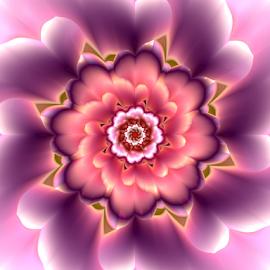Flower 25 by Cassy 67 - Illustration Abstract & Patterns ( love, purple, digital art, harmony, flowers, fractal, light, digital, fractals, flower )