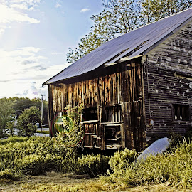 Weathered Barn by Catherine Melvin - Buildings & Architecture Decaying & Abandoned ( nature, barn, summer, landscape, abandoned )