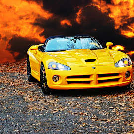 Yellow Viper by JEFFREY LORBER - Transportation Automobiles ( lorberphoto, rust 'n chrome, yellow car, caffeine & octane, viper, jeffrey lorber )