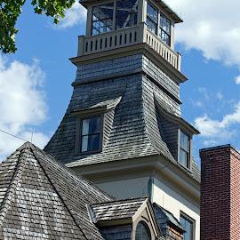 Batsto Village Mansion by Judy Florio - Buildings & Architecture Public & Historical ( mansion, village, tourism, nj, historic, pine barrens )