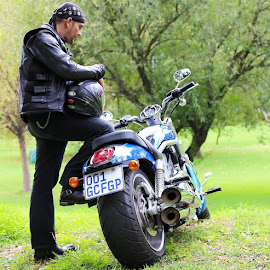 Bear & Bike by Gunther Ferreira - Transportation Motorcycles