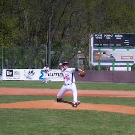 by Vladimir Gergel - Sports & Fitness Baseball