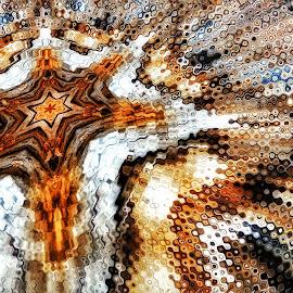 Tree Bark by Ron Meyers - Digital Art Abstract