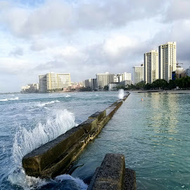 Waikiki Wall Waves by Kathy Suttles - Instagram & Mobile Android